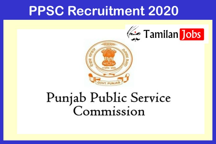 PPSC Recruitment 2021 Out – Apply 85 Naib Tehsildar Jobs