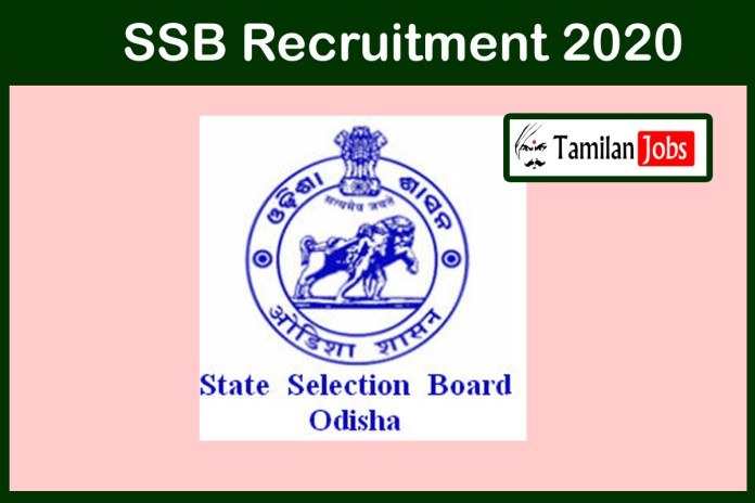 SSB Odisha Recruitment 2020 Out – Degree Candidates Can Apply For 136 Junior Assistant Jobs