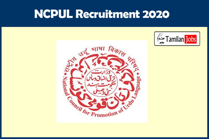 NCPUL Delhi Recruitment 2020 Out – Apply Online LDC, Research Officer Jobs