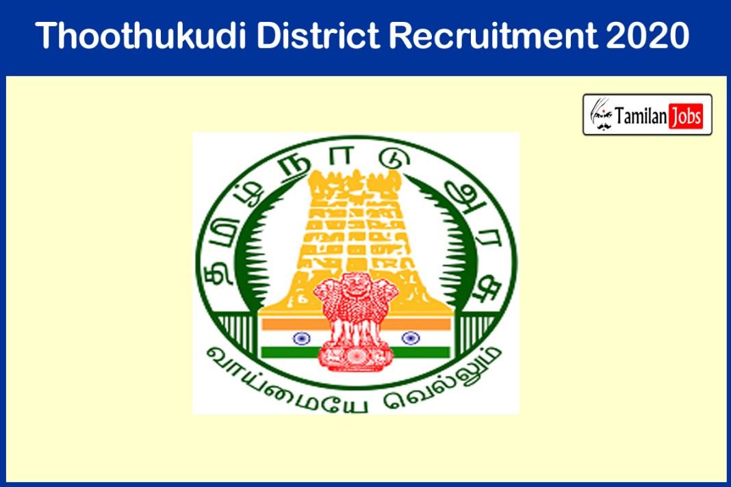 Thoothukudi District Cook Recruitment 2020