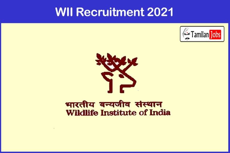 WII Recruitment 2021 Out – Apply Project Associate Jobs