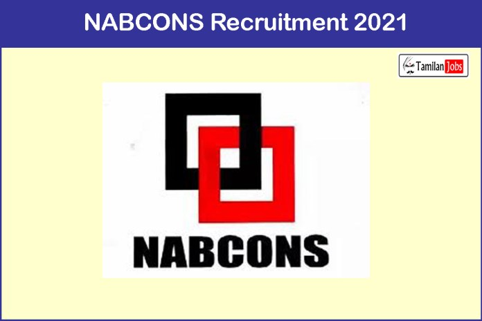 NABCONS Recruitment 2021 Out – Apply 04 Project Consultants Jobs