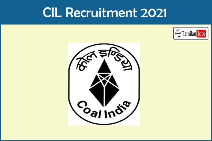 CIL Recruitment 2021 Out – Apply Online Senior Manager Jobs
