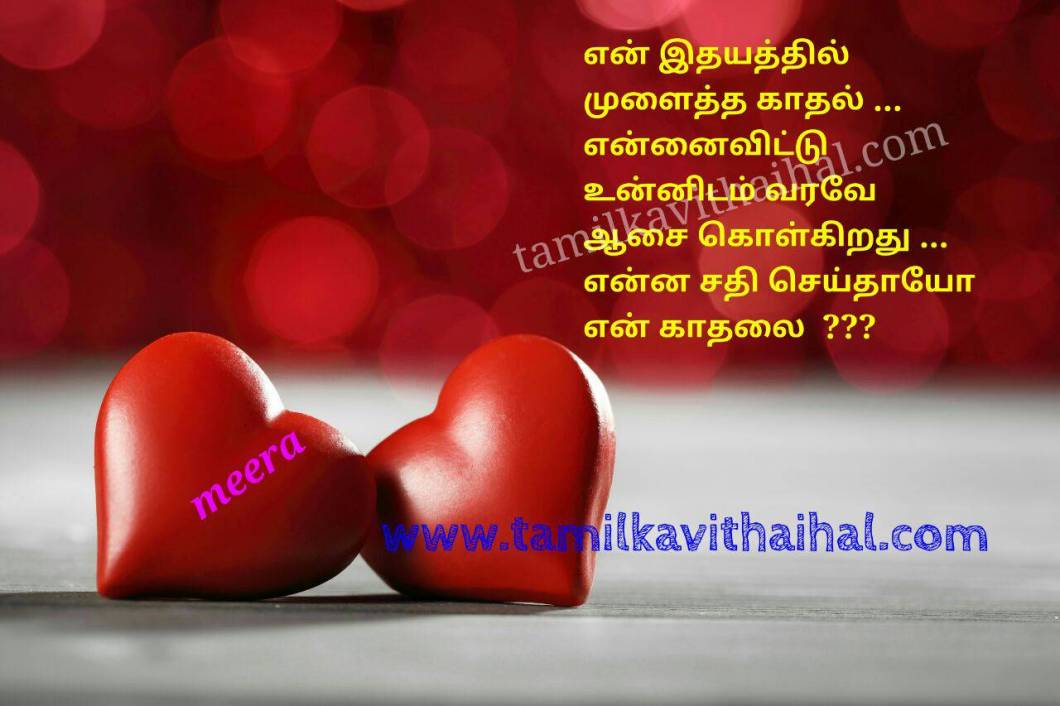 Love Feeling Kavithai Images In Tamil Hd Walljdi Org