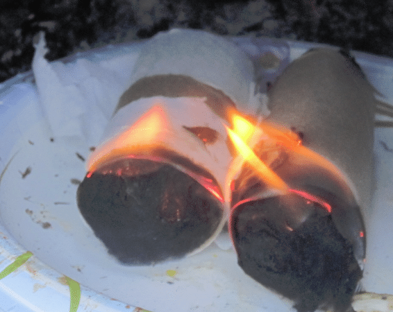 Homemade Fire Starter