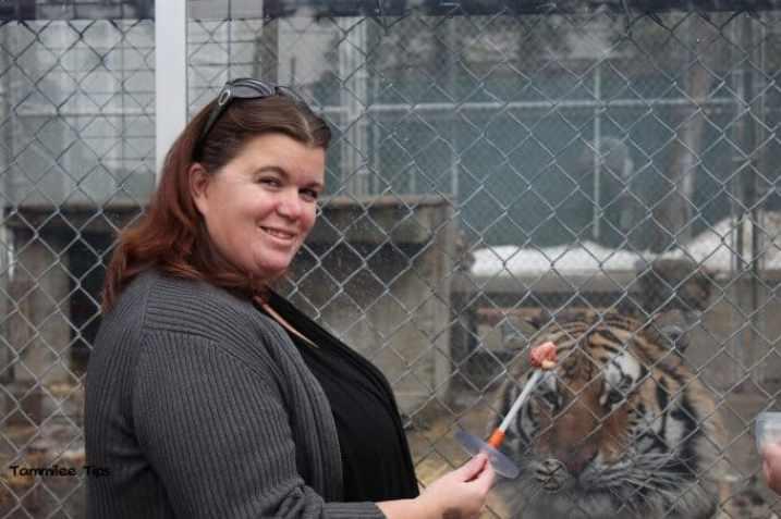 Cat Tales Spokane Koshka Feeding