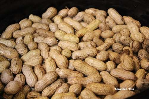 Crock Pot Cajun Boiled Peanuts