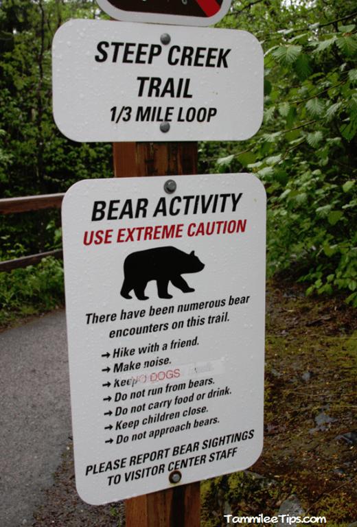 Golden-Princess-Juneau-Mendenhall-Glacier-Bear-Sign.png