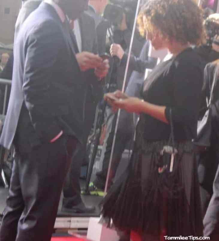 Iron Man 3 Red Carpet Premiere at the El Capitan Theater 9.2