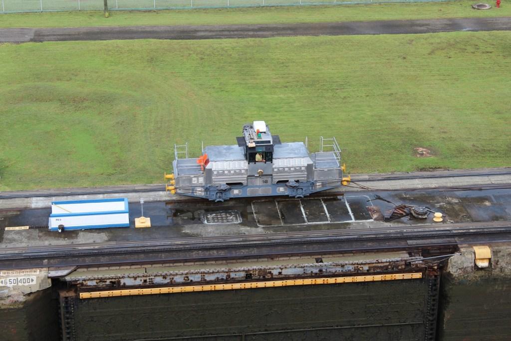 Panama Canal Cruise Mule