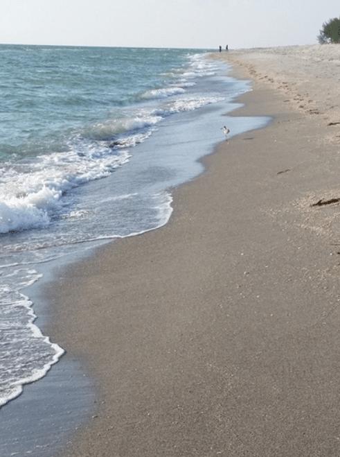 Sanibel beach at captiva