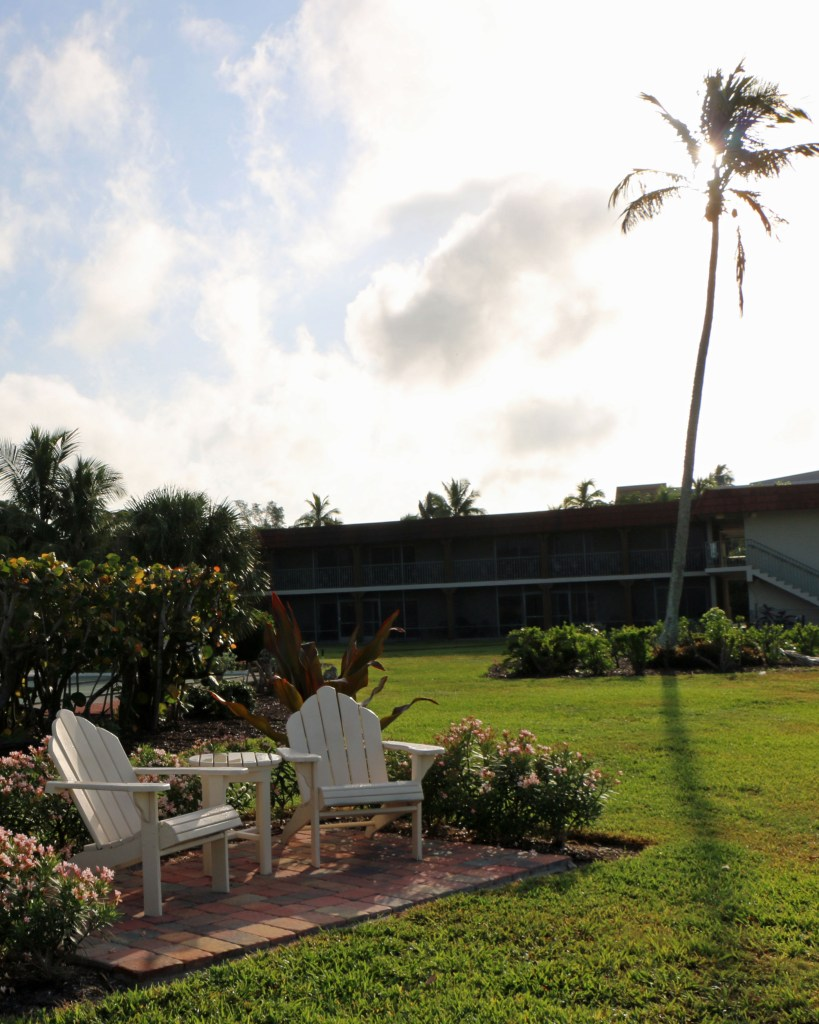 anioriondak chairs and palm trees at West Wind Inn Sanibel