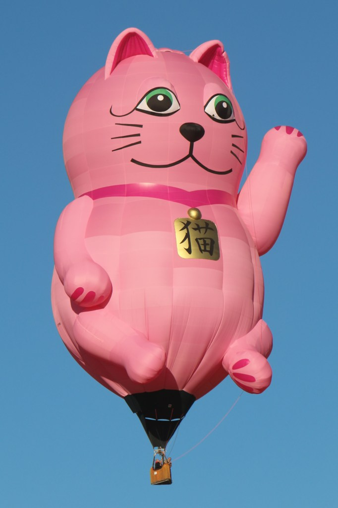 cat baloon Reno Hot Air Baloon Race