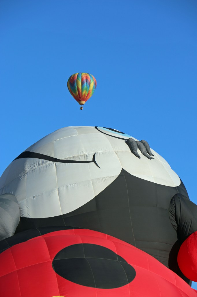 ladybug baloon Reno Hot Air Baloon Wash