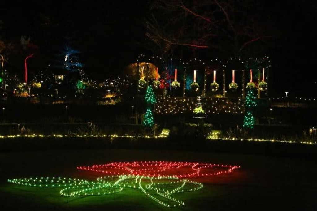 Blog Christmas Lights Rose at Buchart Gardens Victoria BC