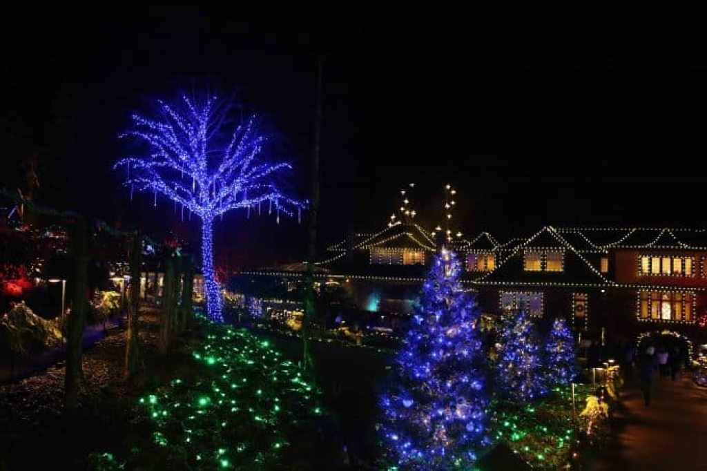 Blog Christmas lights at Buchart Gardens Victoria BC