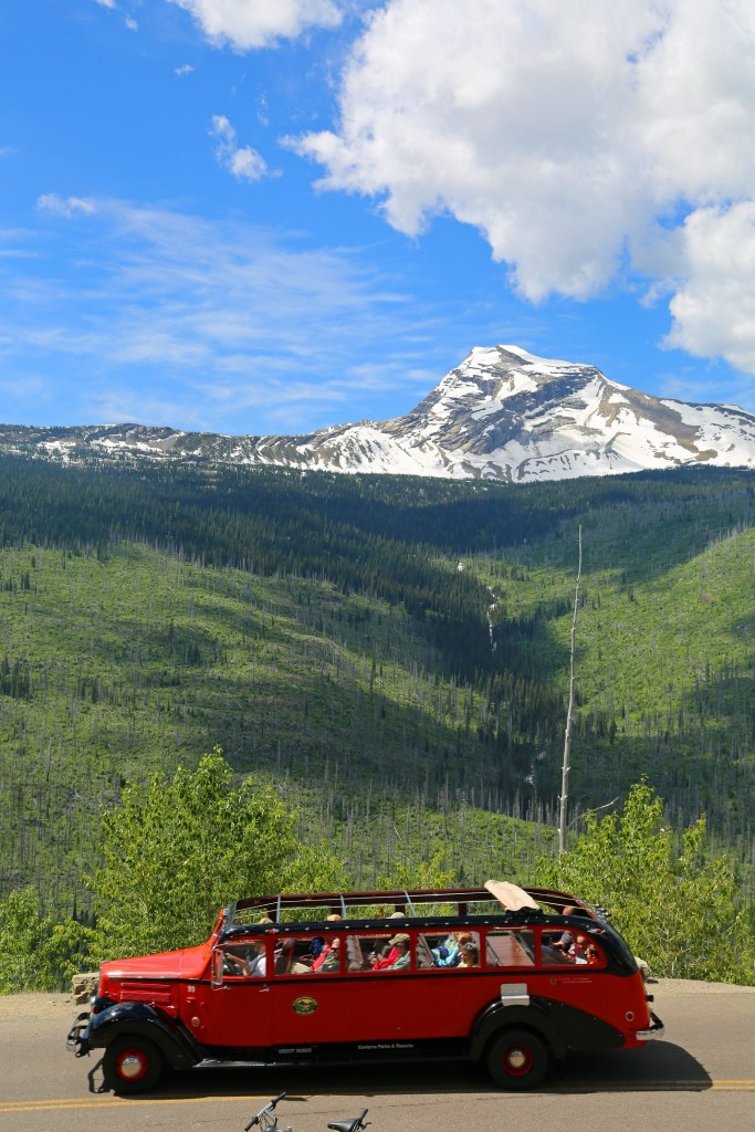 Red Jammer on the Going to the Sun Road in Glacier National Park