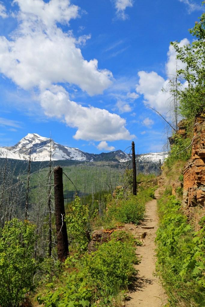 View of Heavens Peak on the Loop Trail Glacier National Park