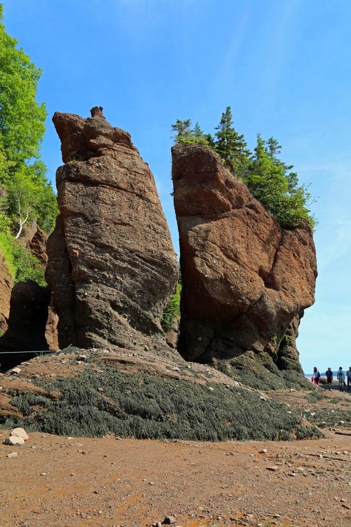 Rock formation on the sea floor Hopewell Rocks