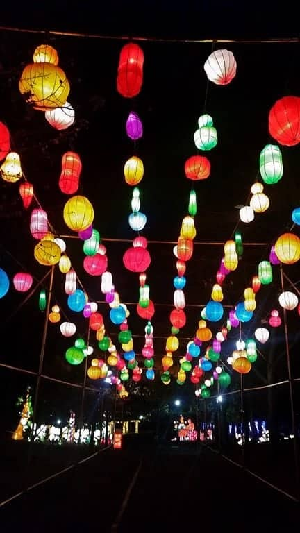 Overhead-lights-at-Chinese-Lantern-Festival.jpg