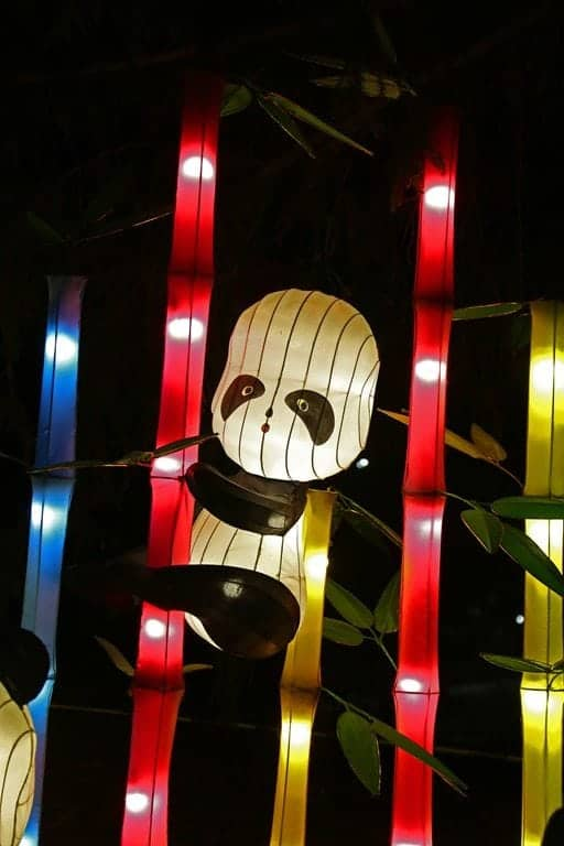 Panda-in-Bamboo-Chinese-Lantern-Festival-Spokane.jpg