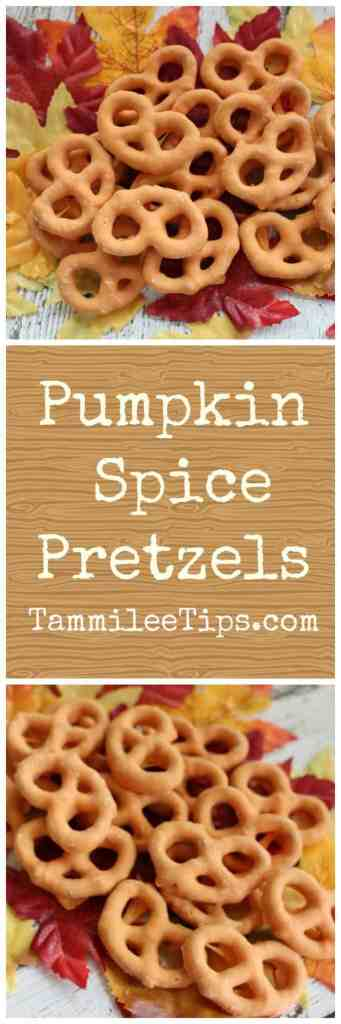 Pumpkin Spice Pretzel Recipe! The perfect fall snack recipe that is so easy to make.