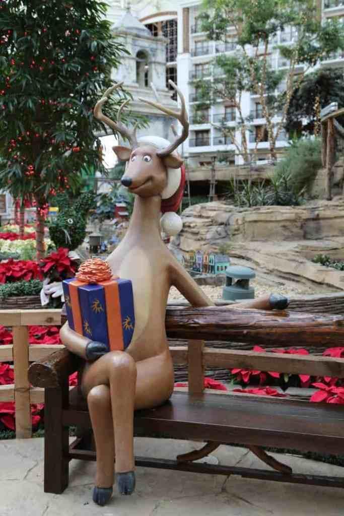Gaylord Reindeer