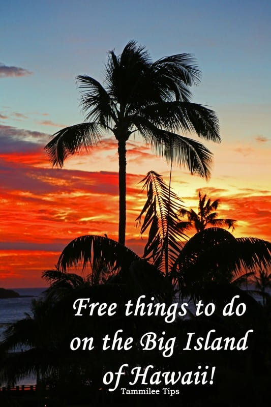 Free things to do on the Big Island of Hawaii! From Kona to Hilo there are so many great things to do on the Big Island of Hawaii!