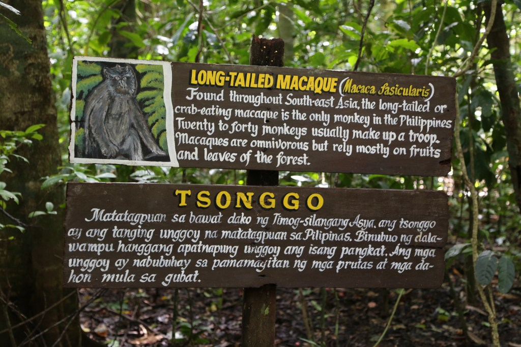 long-tailed-macaque-sign-on-underground-cave-tour-phillipines