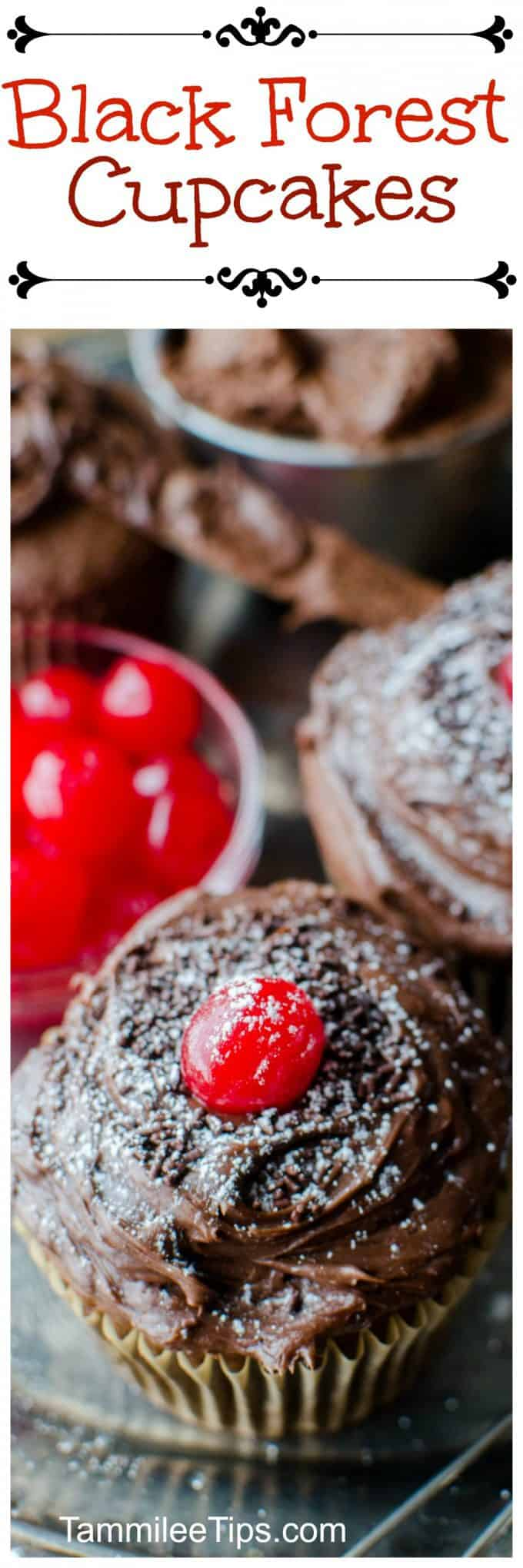 Black Forest Cupcakes Recipe Tammilee Tips