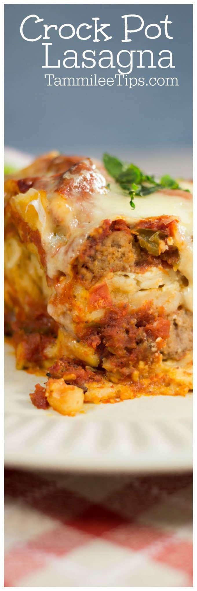 Easy Slow Cooker Crock Pot Lasagna Recipe The Entire Family Will Love.  Ground Beef,
