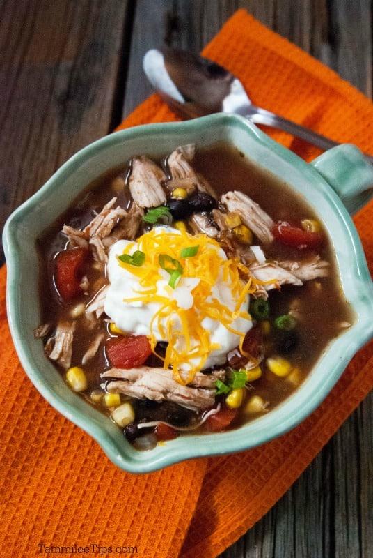 Slow Cooker Crock Pot Chicken Enchilada Soup Tammilee Tips