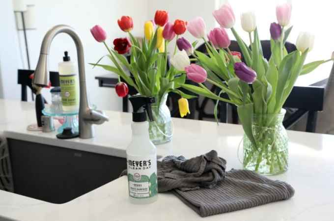 Spring Cleaning with Mrs. Meyer's Concentrate