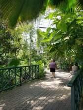 Frederk Meijer Butterfly Conservatory