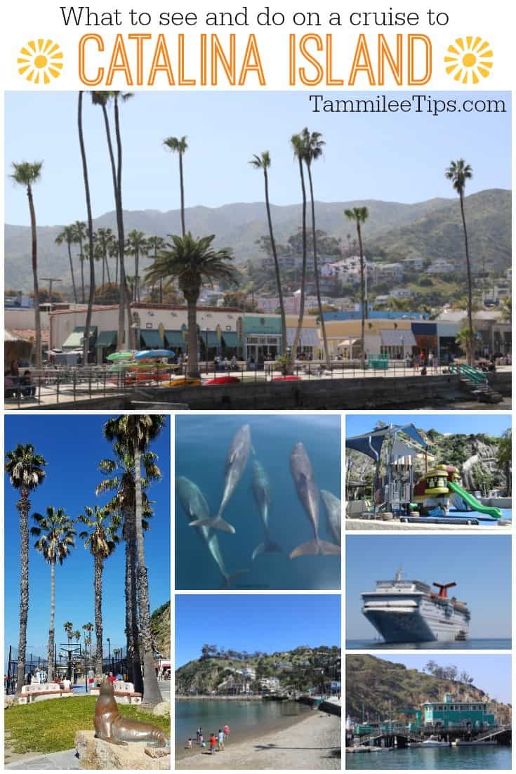 What to see and do on a cruise to Catalina Island in California! #cruise #cruisetravel #travel #catalinaisland #carnivalcruise #catalina #california