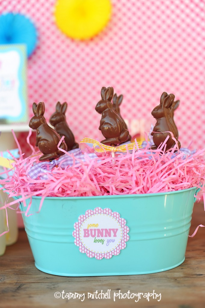 diy chocolate bunnies
