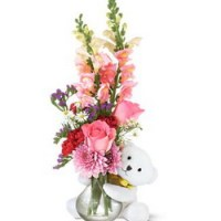 Bear Hug Blooms from Tammys Floral