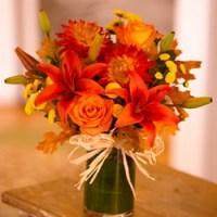 Orange Zest from Tammys Floral