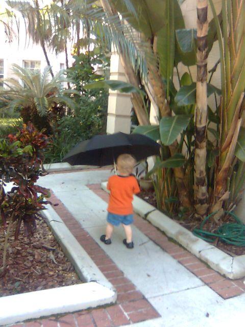 garden-umbrella