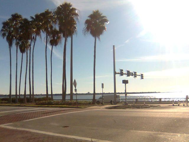 daily-florida