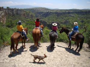 Horseback riding Guanajuato