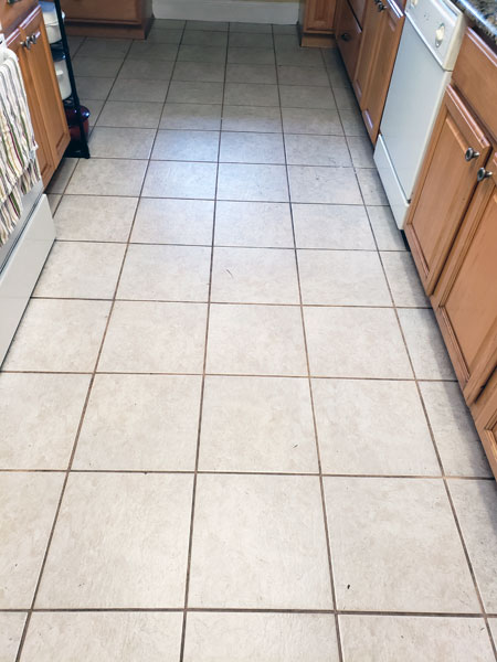 professional grout cleaners tampa fl