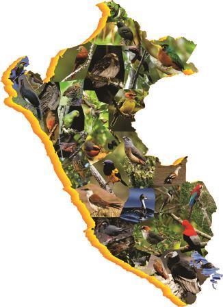 Peruvian birdwatching peru map