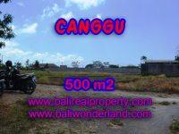 Jual tanah di Canggu 500 m2 di Batu Bolong