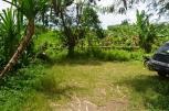 TJCG141 - Tanah dijual ( Land for sale ) di Canggu Bali 04