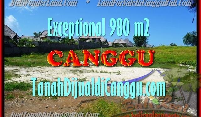 TANAH MURAH JUAL CANGGU 9,8 Are View Sawah, Sungai dan laut
