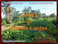 INVESTASI PROPERTY, TANAH di CANGGU DIJUAL MURAH TJCG174