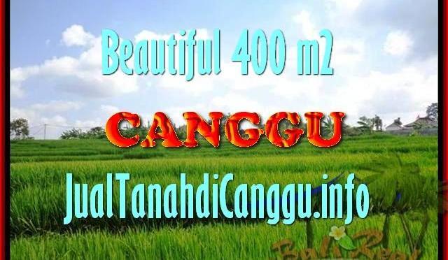 TANAH MURAH DIJUAL di CANGGU Untuk INVESTASI TJCG156
