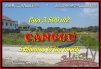 JUAL TANAH di CANGGU BALI 3.500 m2 di Canggu Kayutulang