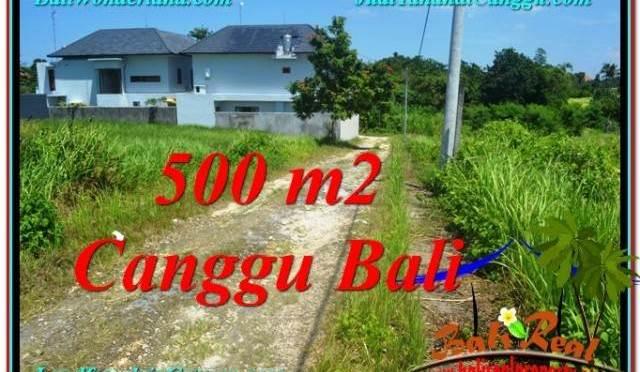 JUAL MURAH TANAH di CANGGU 500 m2 View sawah lingkungan villa